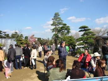 熊本春之植木市场