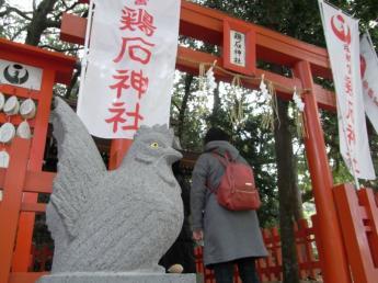 对夜哭有益处的鸡石神社